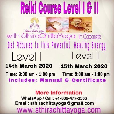 Reiki Courses - Sthira Chitta Yoga School